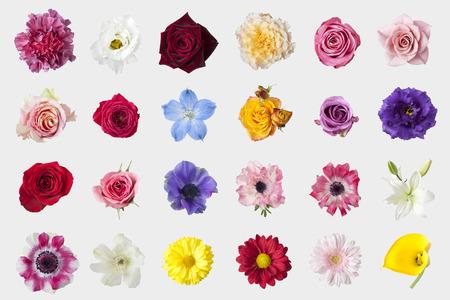 Foto de Flower material - Imagen libre de derechos