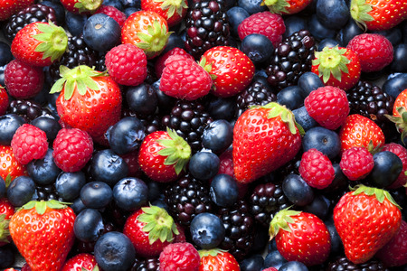 Photo for Mixed berry - Royalty Free Image