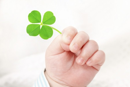 Photo for Four-leaf clover and the hands of the baby - Royalty Free Image