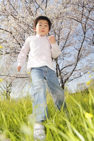 Boy running under the cherry tree