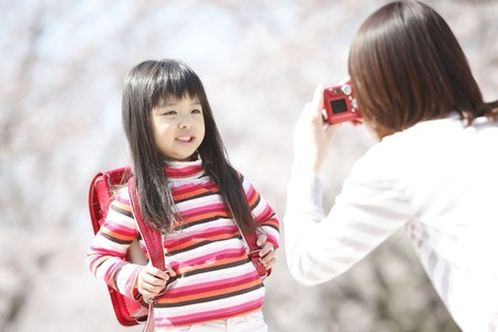 Mother to shoot the elementary school girls under the cherry tree