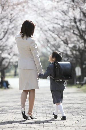 Rear View of elementary school boys and mothers walk under the cherry trees