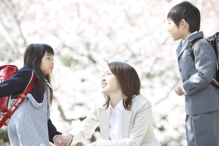 Elementary school students men and women and mothers to talk under the cherry trees