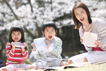 Parent and child to open the lunch under the cherry tree