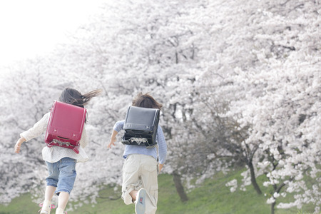 Back view of elementary school students running the cherry trees