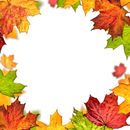 Photo for  autumn leaves frame isolated on white background - Royalty Free Image