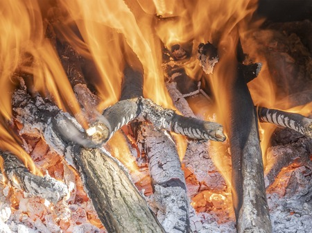 Photo for Fire burning in the fireplace, you can see wood that is not yet covered by flame - Royalty Free Image