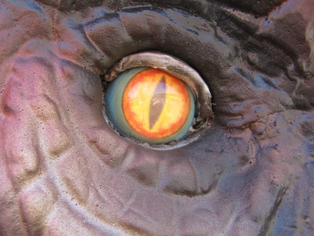 Dinosaur eye, vertical pupil