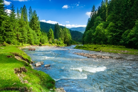 Photo pour landscape with mountains trees and a river in front - image libre de droit