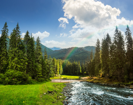 Foto de collage landscape with pine trees in mountains and a river in front flowing to lake in sunset light with rainbow - Imagen libre de derechos