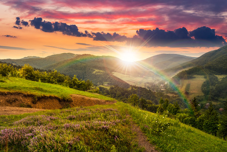 Photo pour composite mountain landscape. flowers on hillside meadow near village in foggy mountain  forest in sunset light with rainbow - image libre de droit
