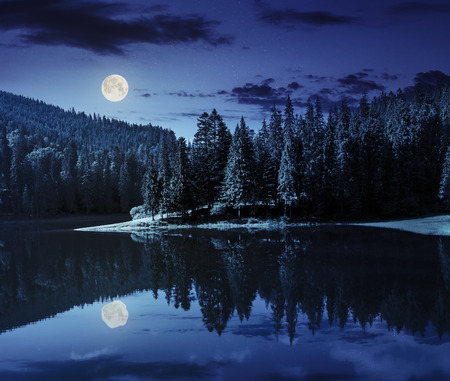 Photo pour lake near the pine forest in mountains at night in full moon light - image libre de droit
