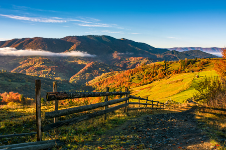 Photo for wooden fence by the road in rural area. autumn countryside landscape in mountains with grassy fields. beautiful misty sunrise - Royalty Free Image