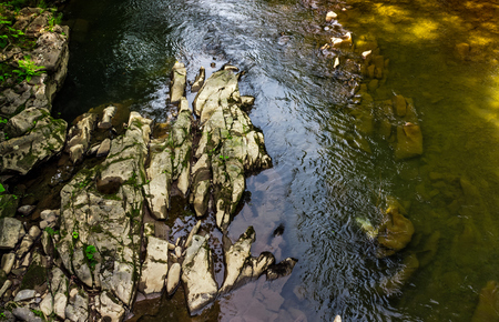 Photo for colorful surface of the forest river. natural background with stone and water textures - Royalty Free Image