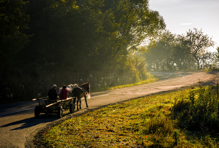 Photo for Volovets, Ukraine - SEP 30, 2016: gypsy family ride a horse cart uphill the serpentine in countryside area. bright autumnal foggy sunrise in Carpathian mountains - Royalty Free Image