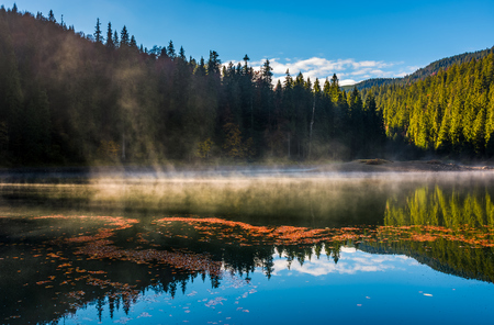 Photo for fog rise over forest lake in mountains at sunrise. absolutely stunning autumnal nature scenery with morning glowing mist in golden sun rays and reddish foliage sliding on water ripples - Royalty Free Image