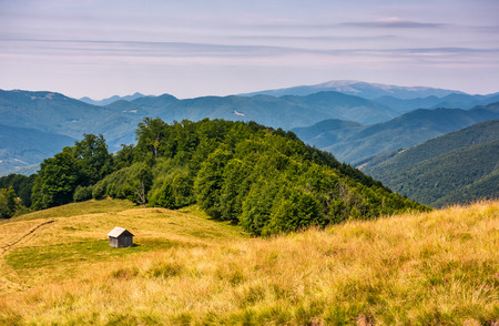 Photo for shed near the forest on a grassy slope. beautiful summer landscape in Carpathian mountains. Polonina Krasna mountain ridge is seen in a far distance - Royalty Free Image