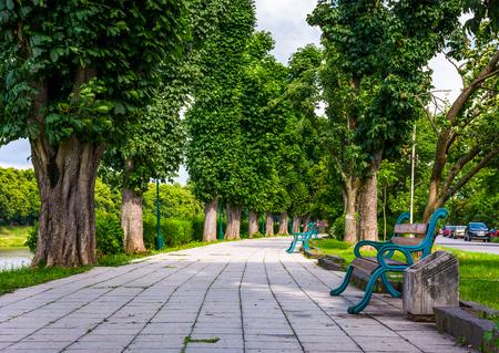 Foto de benches on Kiev embankment in Uzhgorod. lovely chestnut alley in summertime - Imagen libre de derechos