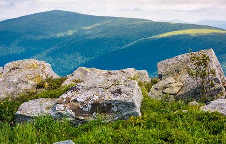 Photo pour giant boulders on grassy slopes of Polonina Runa. beautiful summer scenery in Carpathian mountains with gorgeous cloudscape - image libre de droit