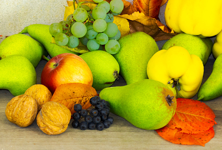 Photo for autumn fruit composition view from the top. helthy and natural food - Royalty Free Image