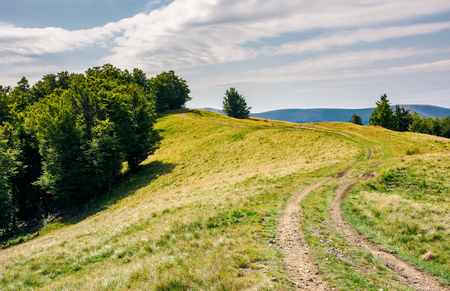 Photo for winding path uphill in to the forest. lovely summer scenery. - Royalty Free Image