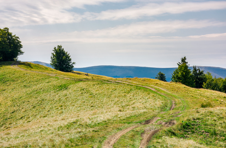 Photo for country road through mountain ridge. lovely countryside background - Royalty Free Image