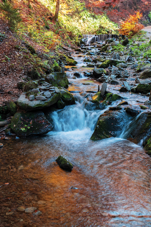 Photo for brook with cascade in beech forest. beautiful nature background in autumn season. colorful scenery, long exposure - Royalty Free Image