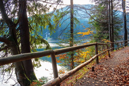 Photo for synevyr mountain lake in autumn evening. beautiful nature scenery of carpathian mountains. fallen foliage. wooden fence along the path around the body of water - Royalty Free Image