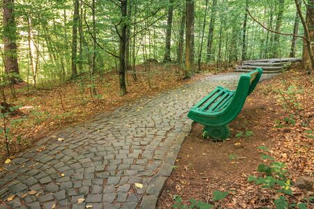 Foto de bench near the stone path in forest. beautiful nature scenery. green foliage on trees in summer time. take a rest in the shade - Imagen libre de derechos