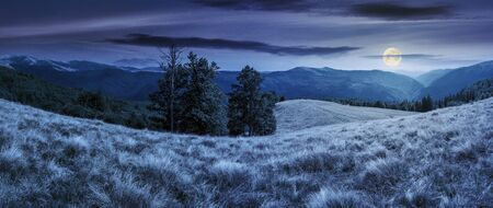 Photo for beautiful panorama of mountain landscape at night in full moon light. beech trees on the meadow with weathered grass. svydovets ridge in the distance. clouds on a blue sky - Royalty Free Image