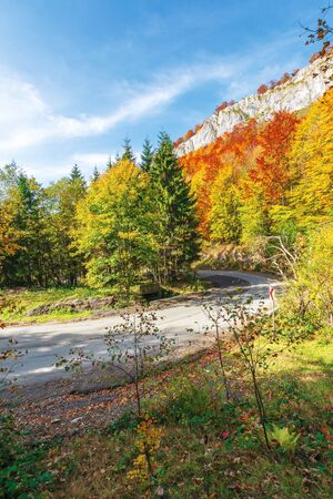 Photo for serpentine road in apuseni mountains, pietrele negre romania. rocky cliff above the passage. trees in colorful foliage. beautiful and sunny autumn weather. - Royalty Free Image