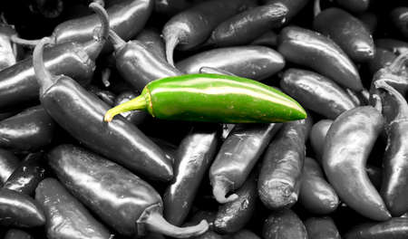 isolated jalapeno green pepper in the middle of many jalapeno green peppers