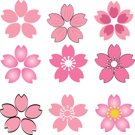 Illustration pour Pink Cherry Blossom  flower set vector with many style include drawing style and shade - image libre de droit
