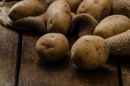 Photo for Raw potatoes, on wood hard board, prepare for gnocchi - Royalty Free Image