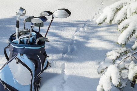 Golf Bag with Clubs in snowy forest, rabbits trace on snow