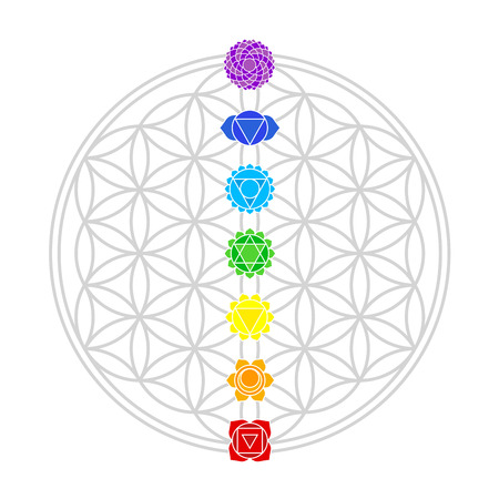 Illustration pour Seven main chakras match perfectly onto the junctions of the Flower of Life   - image libre de droit