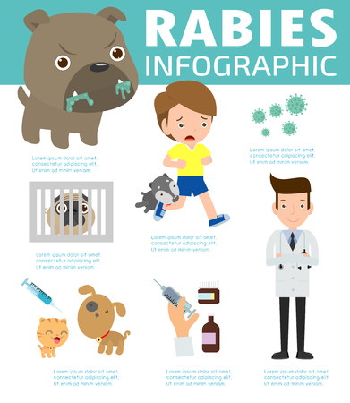 Illustrazione per Rabies infographic, Illustration of rabies describing symptoms and medications or vaccine. cartoon Infographic Vector illustration - Immagini Royalty Free