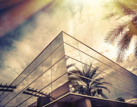 Photo pour Modern office building with palm tree reflecting in glass - image libre de droit