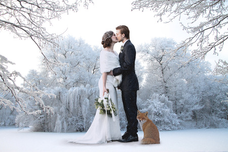 Photo pour Beautiful wedding couple on their winter wedding - image libre de droit