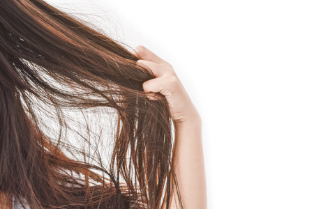 Foto de Combing with brush and pulls long hair. Daily preparation for looking nice, Long Disheveled Hair,Holding Messy Unbrushed Dry Hair In Hands. Hair Damage, Health And Beauty Concept. - Imagen libre de derechos