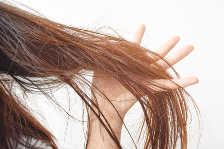 Photo for Combing with brush and pulls long hair. Daily preparation for looking nice, Long Disheveled Hair,Holding Messy Unbrushed Dry Hair In Hands. Hair Damage, Health And Beauty Concept. - Royalty Free Image