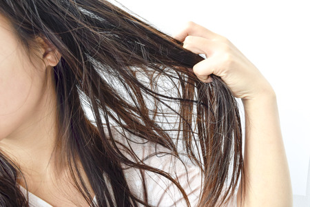 Photo pour Combing with brush and pulls long hair. Daily preparation for looking nice, Long Disheveled Hair,Holding Messy Unbrushed Dry Hair In Hands. Hair Damage, Health And Beauty Concept. - image libre de droit