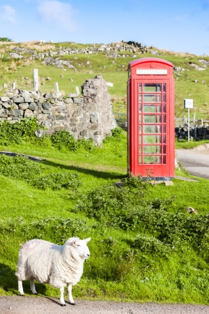 telephone booth with sheep,  mural
