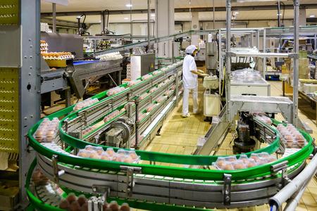 Photo pour Egg processing plant near Bergamo in Italy - image libre de droit