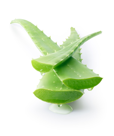 Photo for Aloe vera dripping on white background - Royalty Free Image
