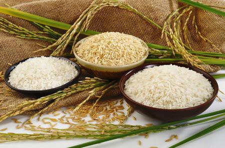 Foto de paddy rice,brown rice,white rice and japanese rice on sack  - Imagen libre de derechos