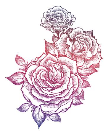 Illustration for Boho flash tattoo linear style beautiful roses. - Royalty Free Image