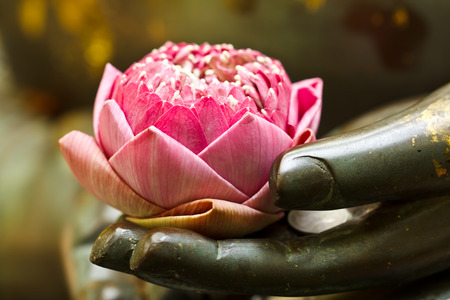 Photo pour the pink lotus in hand of buddha - image libre de droit