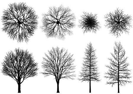 Illustration pour bare tree. Vector trees isolated on a white background. - image libre de droit