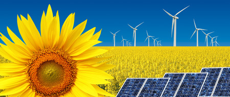 Foto de Sunflower with windmills, concept of alternative sustainable energy - Imagen libre de derechos